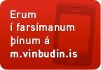 m.vinbudin.is